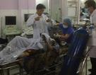 Nghi án người đàn ông tự thiêu gần đại lộ Phạm Văn Đồng