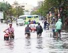 Việt Nam vay 450 triệu USD cải thiện điều kiện sống tại TPHCM