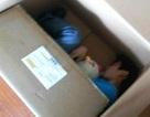 Suýt chết do tự đóng hộp mình để gửi cho bạn gái