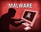 Phát hiện mã độc nguy hiểm nhắm vào cơ quan chính phủ và doanh nghiệp