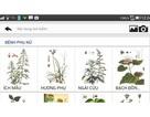 Ứng dụng di động tra cứu thông tin cây thuốc Việt Nam