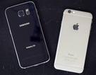 Thử độ bền khi thả rơi tự do bộ đôi Galaxy S6 và iPhone 6
