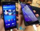 Lộ ảnh thực tế hoàn chỉnh smartphone cao cấp Xperia Z4 của Sony
