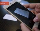 Microsoft ra mắt ứng dụng biến smartphone thành máy scan