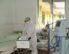 Sốt cao, đau họng - Coi chừng nhiễm cúm A/H5N1
