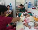 Bệnh sốt xuất huyết, tay chân miệng đe dọa bùng phát dịch