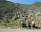 Thuê tư vấn nước ngoài lập quy hoạch Cao nguyên đá Đồng Văn