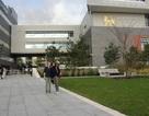 Du học Anh 2014 - Cơ hội học bổng du học tại trường Đại học BIRMINGHAM CITY