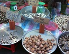 Phát hiện vi rút độc hại trong hải sản tươi sống