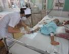 Khánh Hòa: Số ca sốt xuất huyết tăng gấp 3 lần so với cùng kỳ