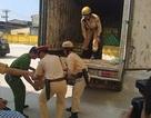 Phát hiện gần 1 tấn lòng thối trên xe tải