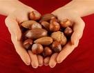 Các loại hạt có vỏ cứng giúp làm giảm nguy cơ tử vong