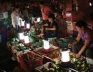Giáp tết Nguyên đán: Bất an với rau quả nhập khẩu