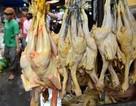 Báo động thực phẩm nhiễm chất cấm