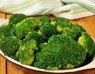 Top 12 loại thực phẩm giàu protein tốt cho sức khỏe