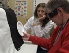 Mắt phỏng sinh học: Hy vọng mới cho người khiếm thị