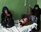WHO ưu tiên cho cuộc chiến chống viêm gan và lao phổi