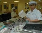 WHO cho phép dùng thuốc và vắc xin chưa thử nghiệm lâm sàng để dập dịch Ebola