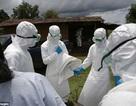 Các chuyên gia lo ngại vi rút Ebola có thể lây truyền qua không khí