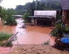 Xả lũ đột ngột ở Đắk Lắk: Huyện phê duyệt không đúng thẩm quyền