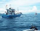 Xác định nguyên nhân hỏng tàu cá vỏ thép đầu tiên