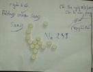Khởi tố đối tượng sử dụng ma túy trong tiệc đầy tháng