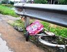 Hai anh em gặp nạn trên đường đạp xe đến trường