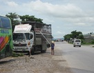 Ngán ngẩm với cảnh tắm lợn trên quốc lộ 1A