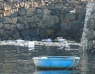 Đề xuất xây nhà máy xử lý chất thải rắn ở đảo Lý Sơn