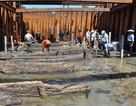Khai quật tàu đắm: Số cổ vật thu được thấp hơn 10 lần dự kiến