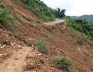 Gần 100 hộ dân bị cô lập từ sau bão số 14