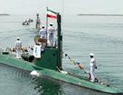 Giải mật bộ đôi tàu ngầm mini Việt Nam