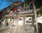 Kỳ dị người đàn ông làm nhà trên cây để cai nghiện
