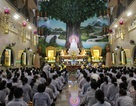 Hàng vạn Phật tử viếng tang Đại lão Hòa thượng Thích Trí Tịnh