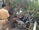 Hà Nội: Lexus tông bay xe máy, húc đổ cây xanh và cột đèn