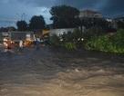 Cả thành phố hỗn loạn vì cơn mưa lớn
