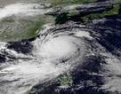 Cảnh giác với bão LINFA