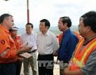 Chủ tịch nước: Thái Nguyên cần sớm nắm bắt cơ hội thu hút đầu tư vào nông nghiệp