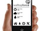 WallTop Forest - Tự động chăm sóc những không gian xanh
