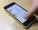 iPhone 5C chạy  iOS 7.1.1 đã có thể jailbreak hoàn toàn