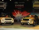 Range Rover Evoque do Victoria Beckham thiết kế bán 3,1 tỷ đồng ở VN