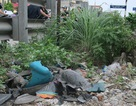 Hà Nội: Nam thanh niên bị tàu hỏa kéo lê 300m