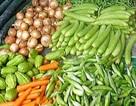 Giá thực phẩm chợ Hà Nội tăng như… bão