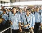 Thái Lan sắp tiếp nhận lao động Việt Nam
