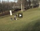 Đại bàng sà xuống quắp trẻ em ở công viên