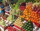 Bát nháo thị trường hoa quả nhập khẩu