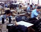 200 ngàn doanh nghiệp thua lỗ, thuế méo mặt thất thu