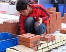 Tăng trợ giúp, người lao động làm việc thêm hiệu quả
