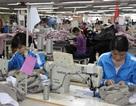 Dệt may 'giữ chân' lao động sau Tết