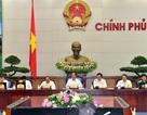 Chính phủ thống nhất kiến nghị Quốc hội sửa Điều 60 Luật BHXH năm 2014